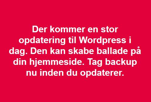 Wordpress 5.0 backup og opdateringopdatering
